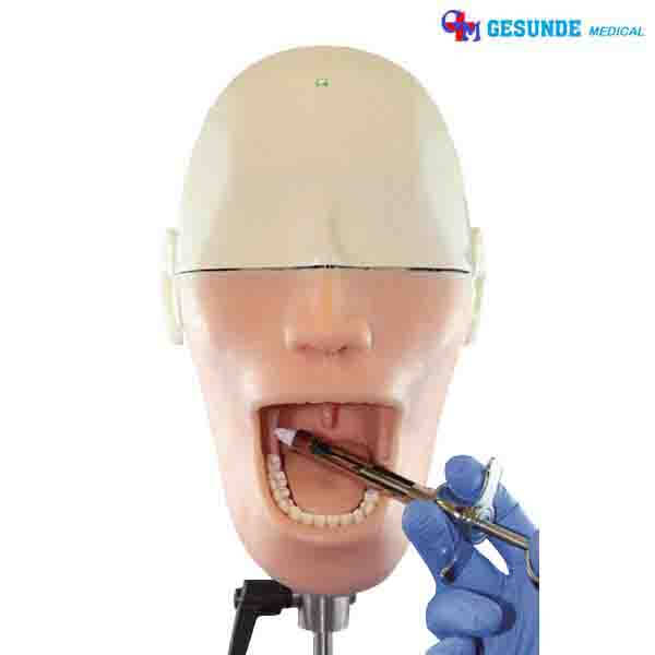 Oral Anesthesia Manikin Kami Menjualnya 085984dd89